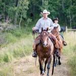 cowboys horses